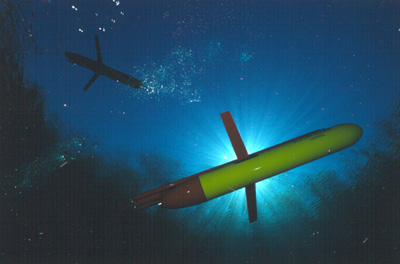 Underwater picture of a Slocum glider.